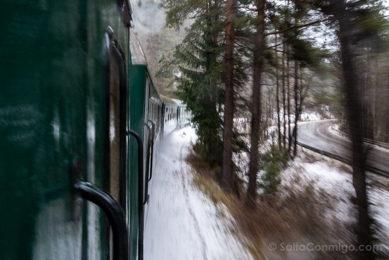 Tren a Bansko Paisaje Nieve Vagon Velocidad