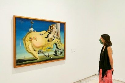 Museo Nacional Reina Sofia Dali Rostro del Gran Masturbador