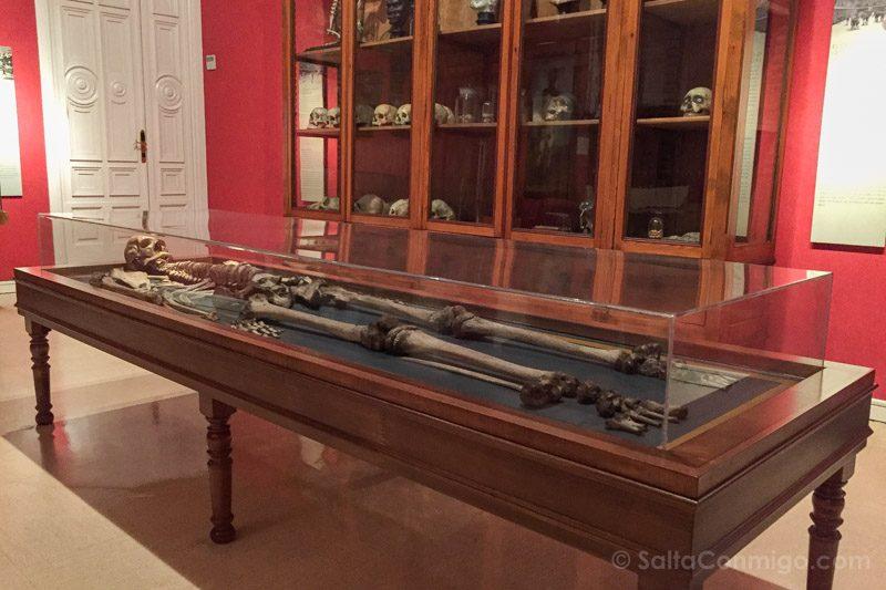 Museos de Madrid Museo Nacional Antropologia Esqueleto