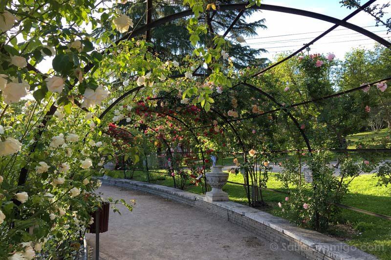 Parques Madrid Parque Oeste Rosaleda