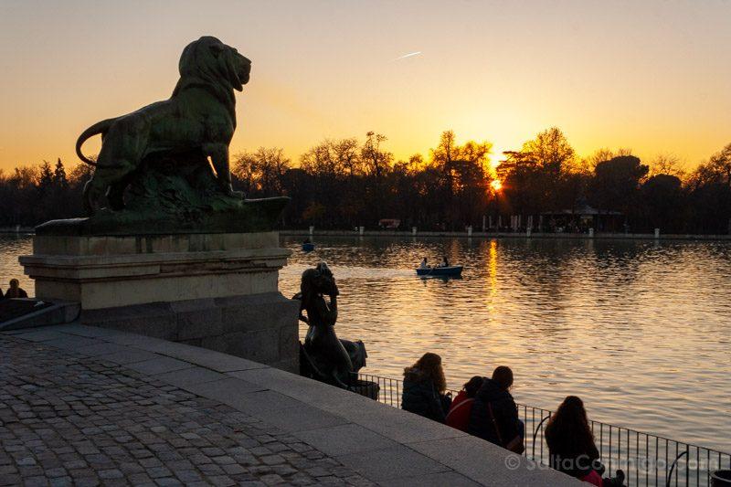 Parques Madrid Retiro Estanque Leon Puesta Sol Barca