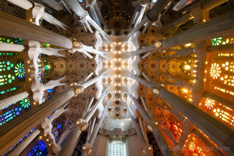 Sagrada Familia Barcelona Interior Techo Nave Central OjoPez
