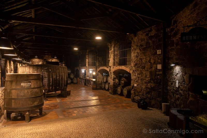 Bodegas Oporto Bodega Burmester Entrada