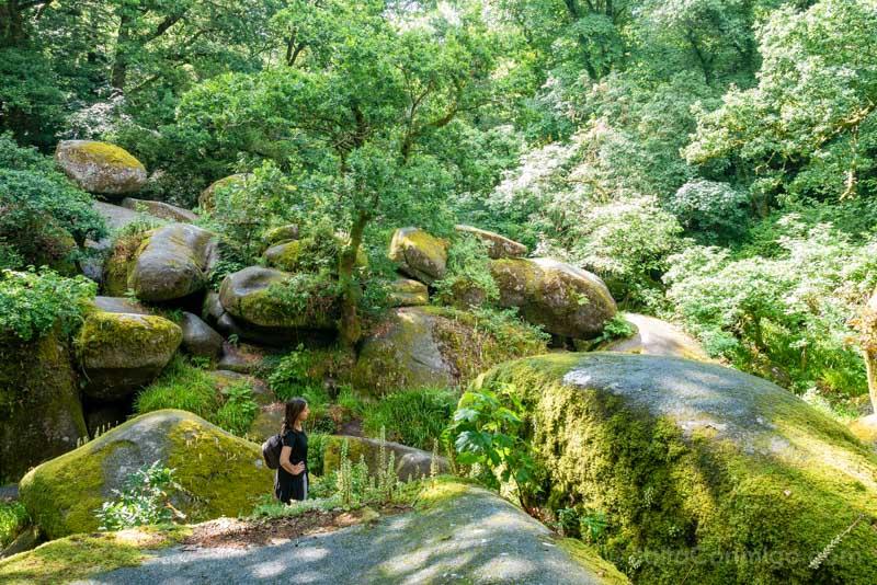 Pueblos Bretana Francia Huelgoat Bosque Sara