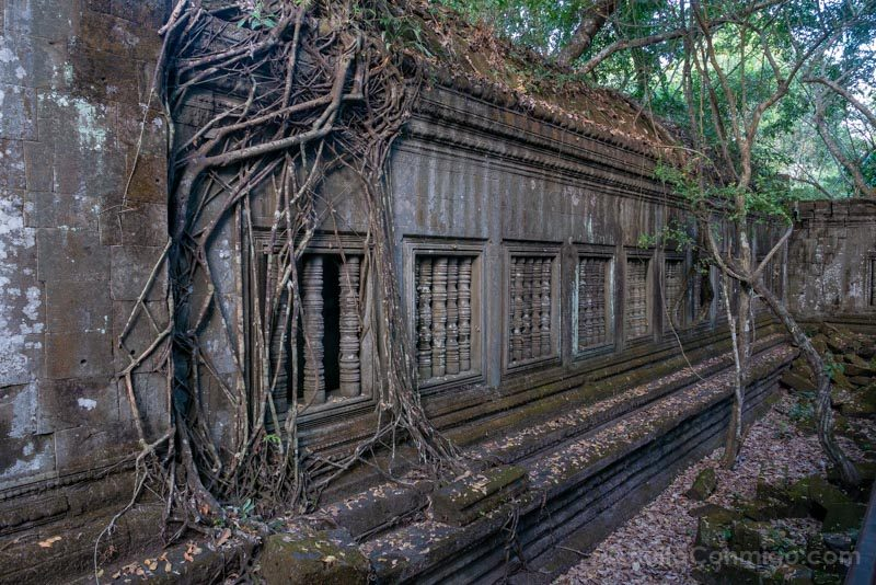 Angkor En 2 Dias Beng Mealea Raices