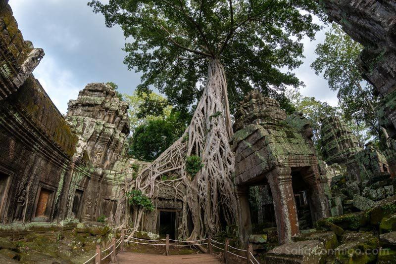 Angkor En 2 Dias Ta Prohm Tomb Raider