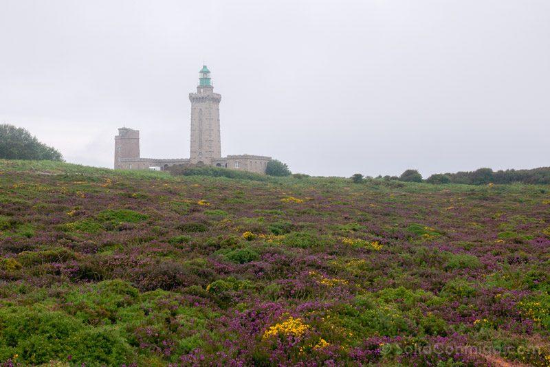 Cabo Frehel Bretana Faro Vegetacion