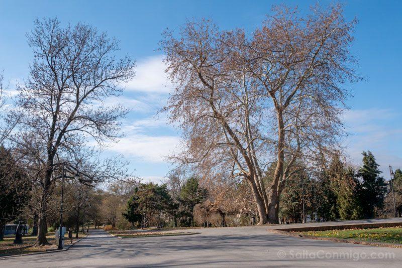 Que Ver en Varna Bulgaria Parque Litoral