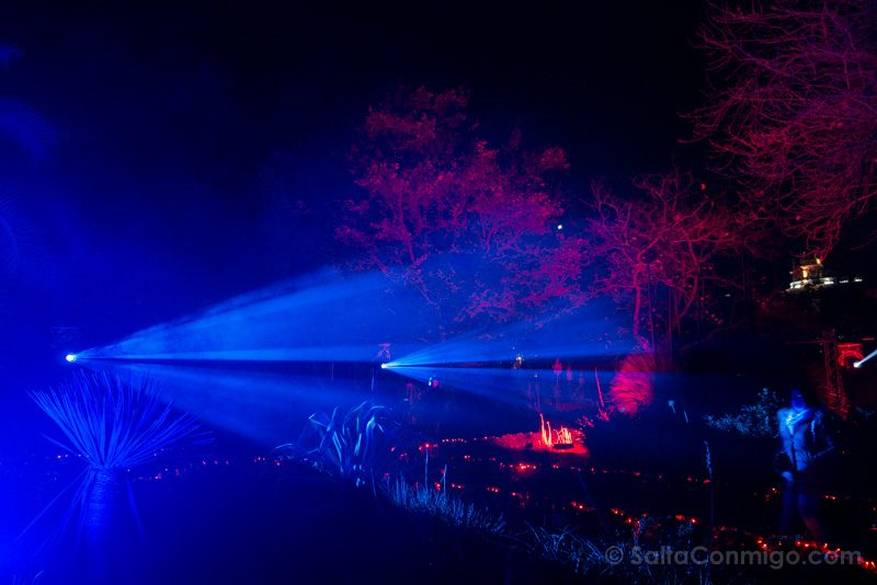Luces Navidad Jardin Botanico Azul Rojo