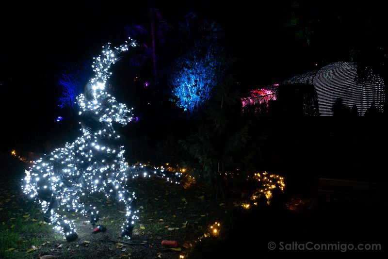 Luces Navidad Jardin Botanico Ciervo