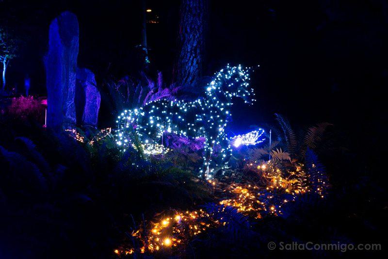 Luces Navidad Jardin Botanico Unicornio