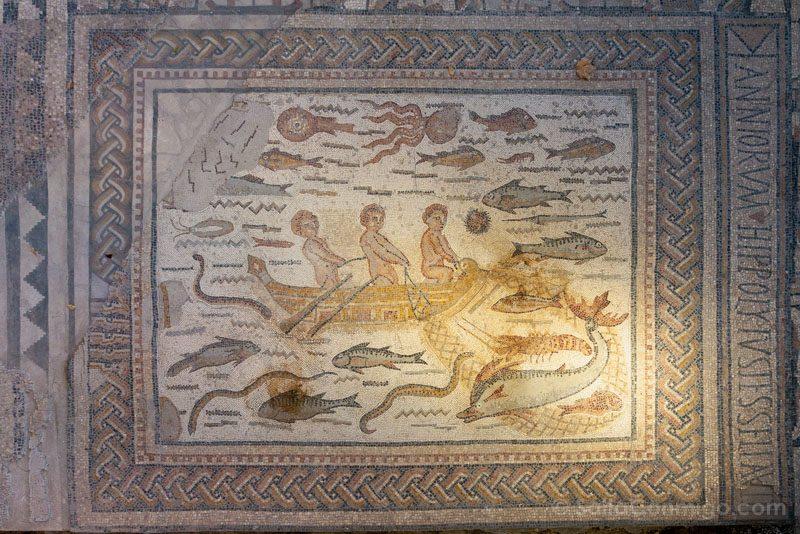 Complutum Alcala Henares Casa Hippolytus Mosaico Detalle