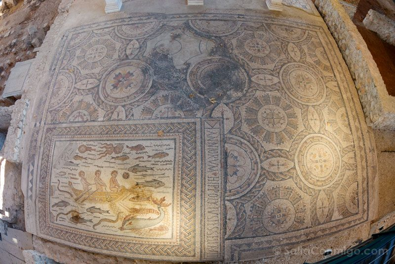 Complutum Alcala Henares Casa Hippolytus Mosaico