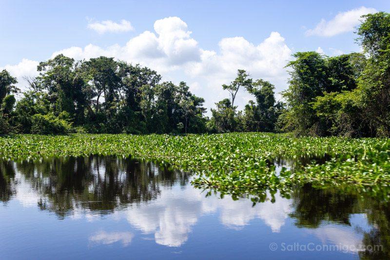 Naturaleza Venezuela Lago Maracaibo