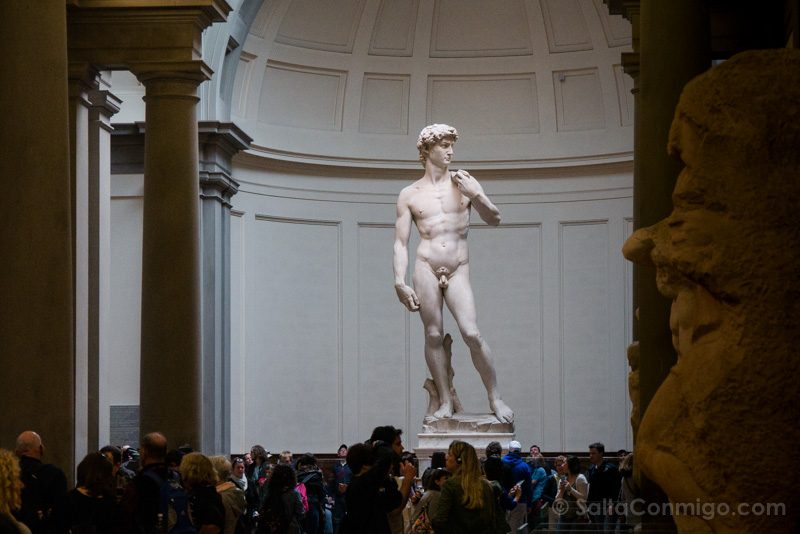 Que Ver En Florencia En Un Dia Galleria Accademia David