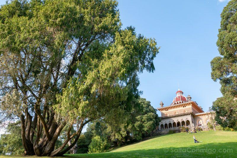 Palacio de Monserrate Jardin Pradera Cesped