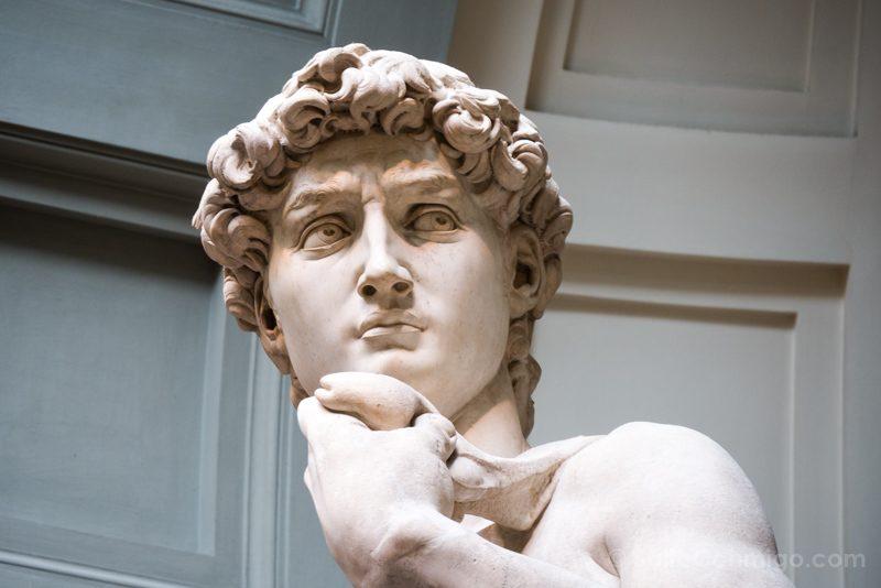 Galeria de la Academia de Florencia David Detalle Cara
