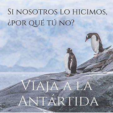 Te ayudamos a viajar a la Antártida